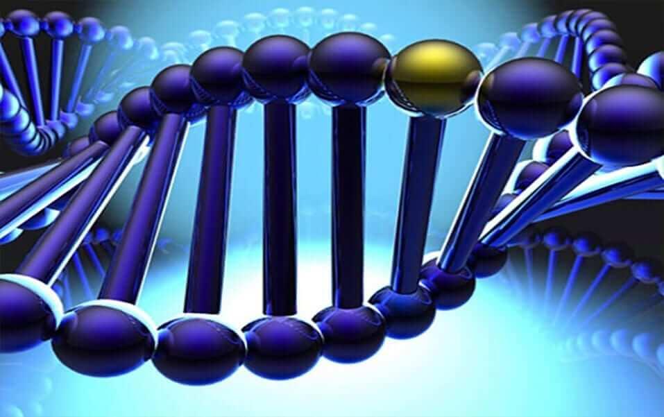 Вчасне виявлення генетичного детермінованого захворювання - є запорукою успішного лікування! детская больница запорожье КНП «Міська дитяча лікарня №5» ЗМР – це єдина у місті Запоріжжі багатопрофільна дитяча лікарня, де сконцентровано всі види надання спеціалізованої медичної допомоги дитячому населенню: стаціонарної, консультативної амбулаторно-поліклінічної та виїзної для інтенсивної терапії новонародженим.