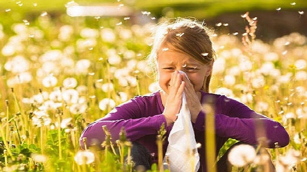 8 липня - Всесвітній день боротьби з алергією детская больница запорожье КНП «Міська дитяча лікарня №5» ЗМР – це єдина у місті Запоріжжі багатопрофільна дитяча лікарня, де сконцентровано всі види надання спеціалізованої медичної допомоги дитячому населенню: стаціонарної, консультативної амбулаторно-поліклінічної та виїзної для інтенсивної терапії новонародженим.