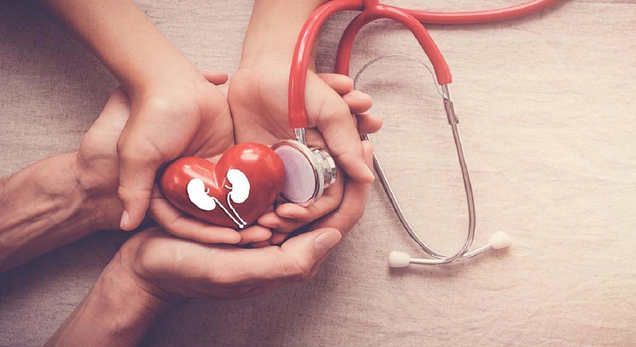 Як розпізнати дитячу ниркову недостатність детская больница запорожье КНП «Міська дитяча лікарня №5» ЗМР – це єдина у місті Запоріжжі багатопрофільна дитяча лікарня, де сконцентровано всі види надання спеціалізованої медичної допомоги дитячому населенню: стаціонарної, консультативної амбулаторно-поліклінічної та виїзної для інтенсивної терапії новонародженим.